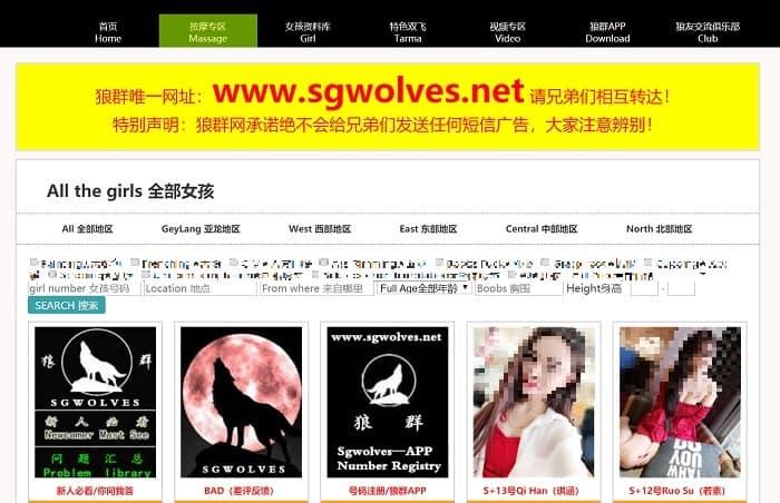 sgwolves www.sgwolf.com net screenshot 2